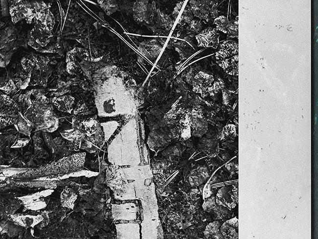 EL COMITÉ DE ADQUISICIONES DE PHOTOESPAÑA SELECCIONA EL TRABAJO NARRAR LO IMPOSIBLE, DE MANUEL DIEGO SÁNCHEZ, EN ESPACIO ALEXANDRA